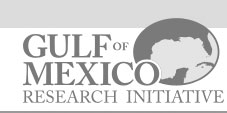 Gult of Mexico Research Initiative